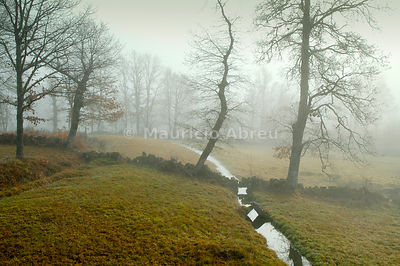 A foggy day in the Barroso region. Trás-os-Montes, Portugal