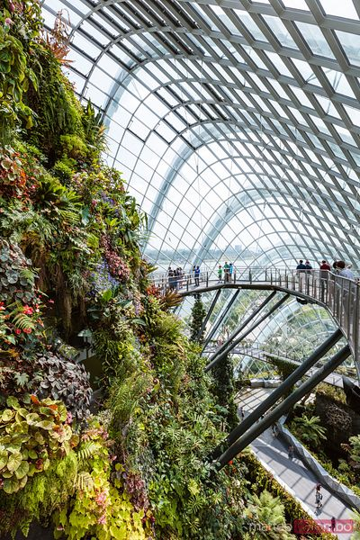 Tourists at Cloud forest, Gardens by the Bay, Singapore