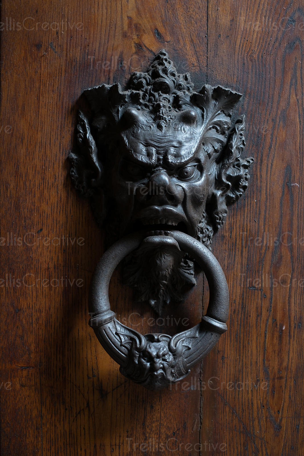 Medievial door knockers in Volterra, Italy