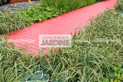 Contemporary garden, Evergreen, Perennial, Red, Wooden footbridge, Digital, Grasses, Variegated