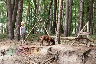 Boy walking with dog in forest