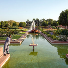 A gardener fills a bird table with seed in the Mughal Gardens at Rashtrapati Bhawan