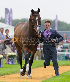 Simon Grieve and CORNACREW - The first vets inspection (trot up),  Land Rover Burghley Horse Trials, 3rd September 2014.