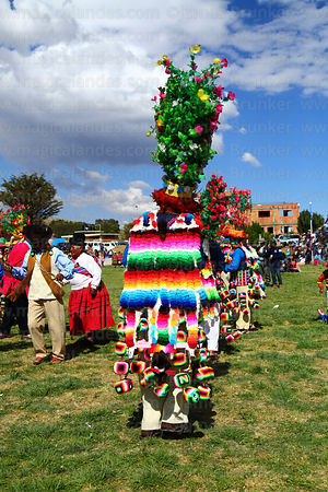 Rear view of costume of mucululu dancer at festival in Compi Tauca, La Paz Department, Bolivia