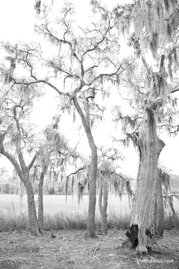 BEAUFORT SOUTH CAROLINA  BLACK AND WHITE