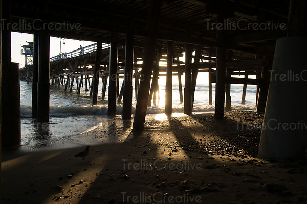Long shadows casted by the pillars holding up the pier with crashing waves