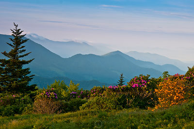 Roan Highlands Morning View