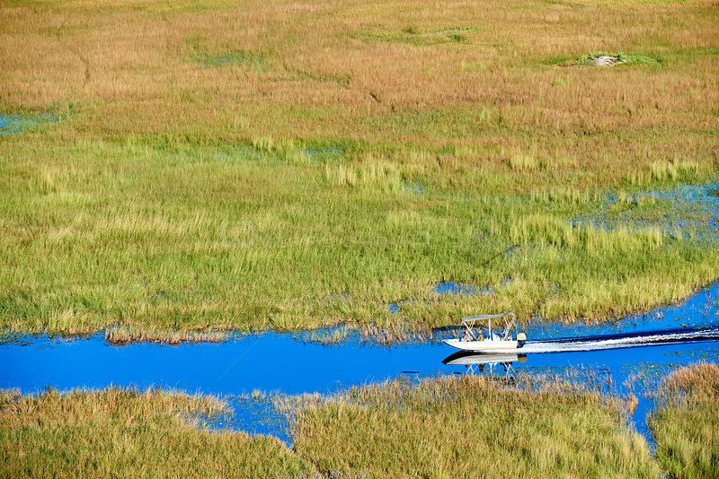 Aerial view of boat cruising on a channel of the Okavango delta, Botswana