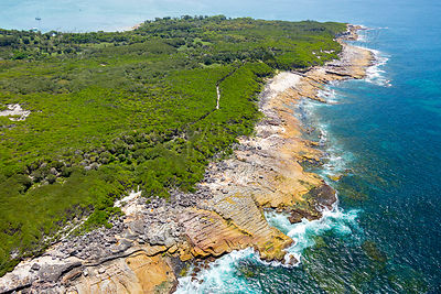 Jibbon Head, Royal National Park