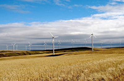Wind towers in eastern Oregon wheat fields