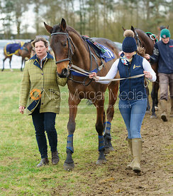 QUIZZACLE NOMAD (Tom Strawson) - Race 7 - Maiden - The Cottesmore Point-to-point 26/2