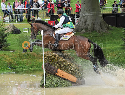 Bill Levett and SHANNONDALE TITAN - Event Rider Masters CIC***