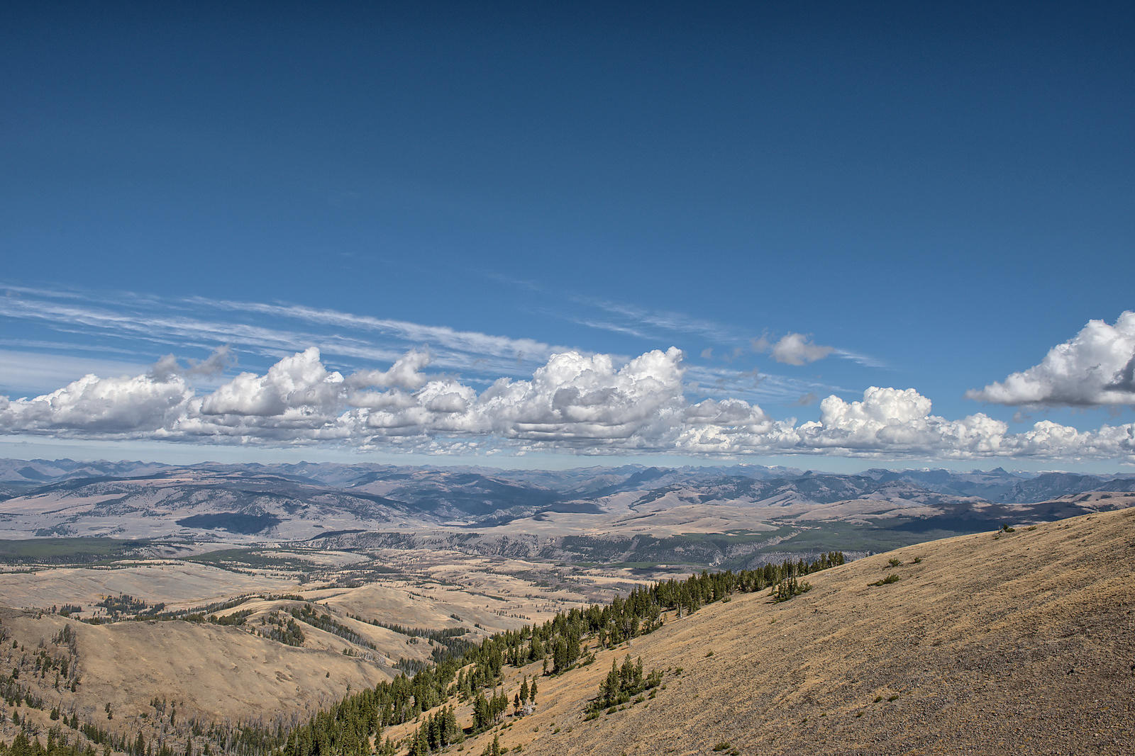 Yellowstone-View-From-Washburn-0288682-HDR