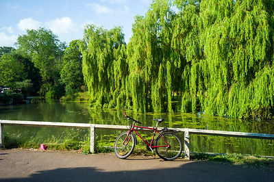 A red bicycle parked by the River Cam, Cambridge