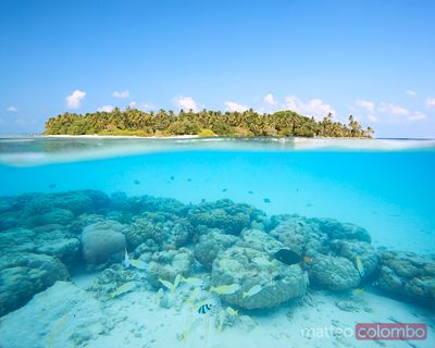 Tropical island in the Maldives and underwater reef