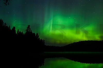Northern Lights above the Lake Sorsajärvi
