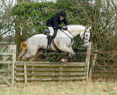 Alex Brooman White Jumping a fence on the first line. The Cambridge University Drag Hounds at Great Gidding 9/12