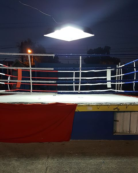 Boxing_Ring_(C)_Andrew_Jackson