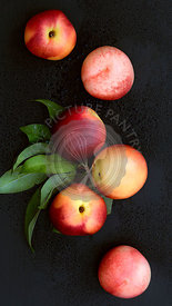 Whole red and yellow nectarines on a black background.