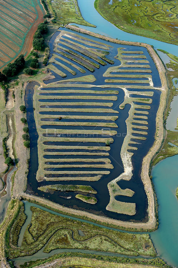 Aerial view of fish farm, La Guittiere Marsh, South Vendee, France, July 2017.