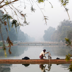 A man washes clothes in a canal on Rajpath at dawn. Designed by Sir Edward Lutyens, the wide boulevards surrounded by parklan...