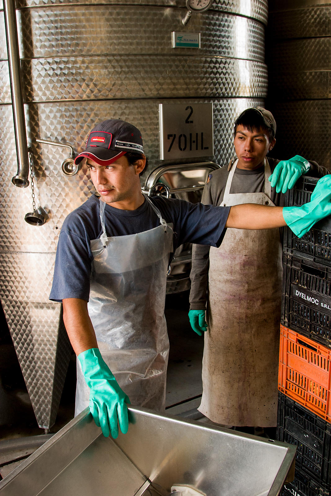 Two young male cellar workers take a break from making wine