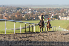 NEWMARKET, ENGLAND - NOVEMBER 10, 2018: Two horses working on the Warren Hill racehorse training gallops at Newmarket, England.