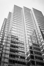 Chicago Office Building  Black and White Photo