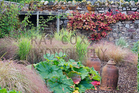 Rhubarb, forcing jars, grasses etc in corner of walled garden
