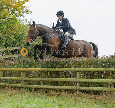 HB jumping a hedge near Wilson's - The Cottesmore at Langham.