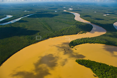 Aerial view of lowland rainforest and Kinabatangan River and tributaries coloured with mineral deposits, Sabah, Malaysia . 2007