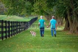 older couple walking and holding hands with senior dog in rural area