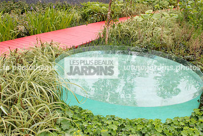 Contemporary garden, Perennial, Pool, Red, Wooden footbridge, Digital, Grasses