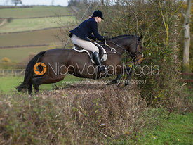 Lara Hellyer jumping a hedge at Town Farm