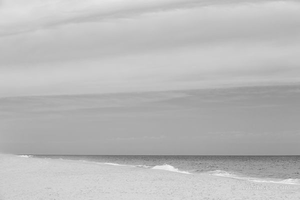BEACH THE HAMPTONS LONG ISLAND NEW YORK BLACK AND WHITE