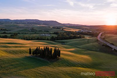 Aerial view of famous cypress grove at sunset, Tuscany, Italy