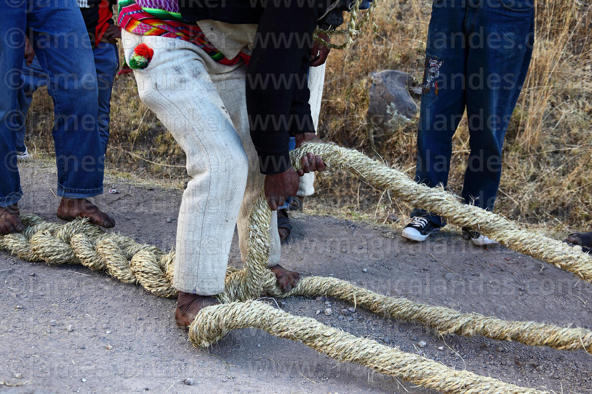 Man plaiting 3 thick grass ropes together to make the foundation ropes for rebuilding the bridge, Q'eswachaka , Canas provinc...