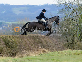 Hilary Butler jumping a hedge above Wilson's covert