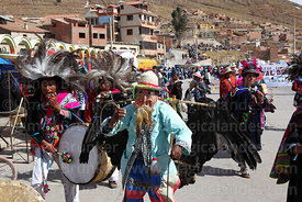 Masked kusillo character wearing a dead Andean condor (Vultur gryphus)dancing with suri sikuris group at Chutillos festival, ...