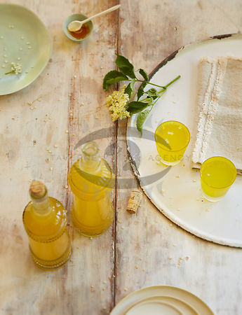 Elderflower by Buettner