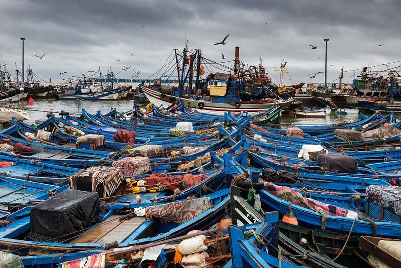 The Fishing Port at Essaouira