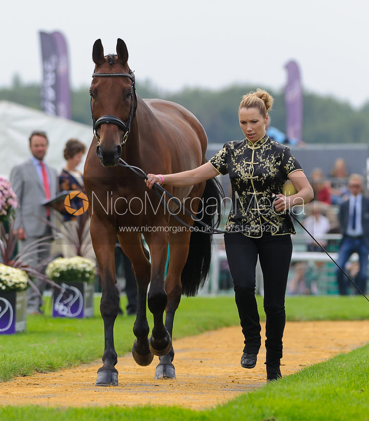 Megan Heath and ST. DANIEL - The first vets inspection (trot up),  Land Rover Burghley Horse Trials, 3rd September 2014.