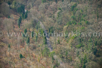 Aerial view of road through woodland, Somerset
