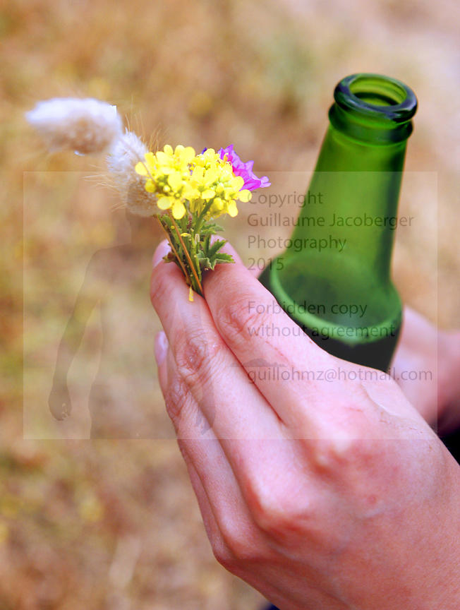 Field flowers and beer
