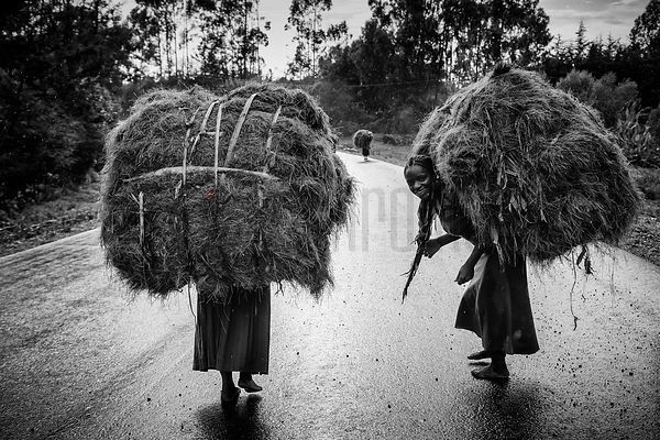 Women on a Wet Road carrying Hay