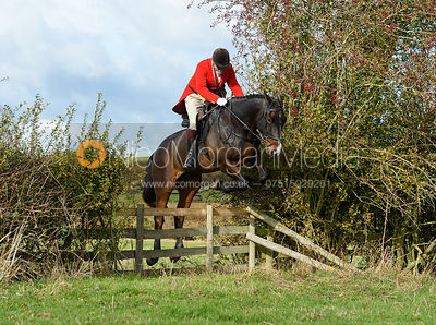 Frank Herrick jumping a hedge near Little Dalby. Quorn Hunt Opening Meet 2018
