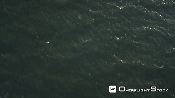 Over open ocean off the New Jersey coast at 200 feet elevation. No horizon. Shot in November