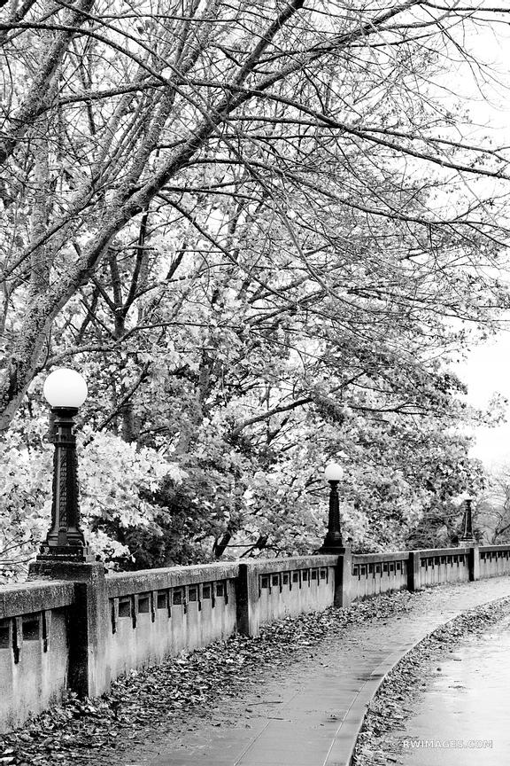 SEATTLE MARSHALL PARK SEATTLE FALL BLACK AND WHITE VERTICAL
