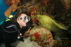 "Woman scuba diver with green moray eel ""Elvis"", Tormentos Reef, Cozumel, Mexico"