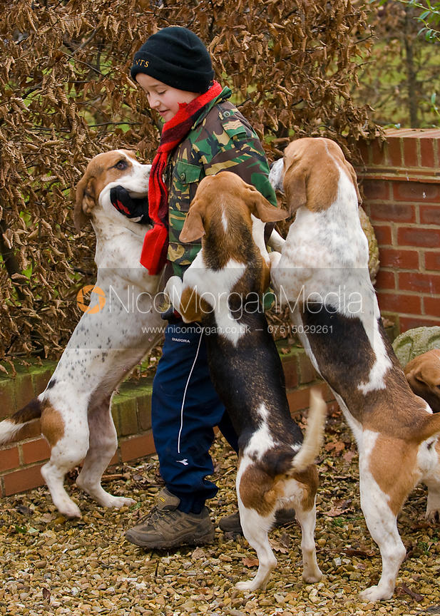 A young supporter is greeted by enthusiastic basset hounds